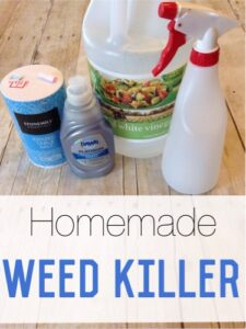 Cheap & Easy DIY Weed Killer