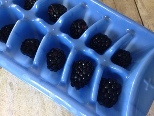 fruity-ice-cubes.jpg