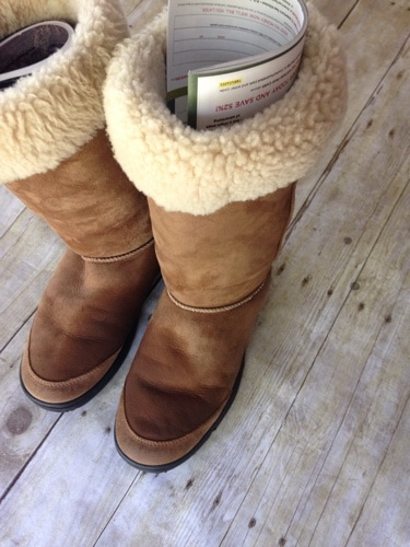 how-to-clean-and-protect-uggs.jpg