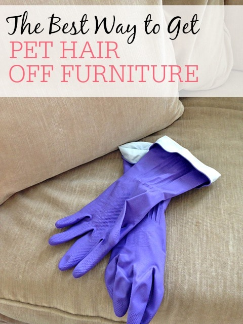 the best way to get pet hair off furniture