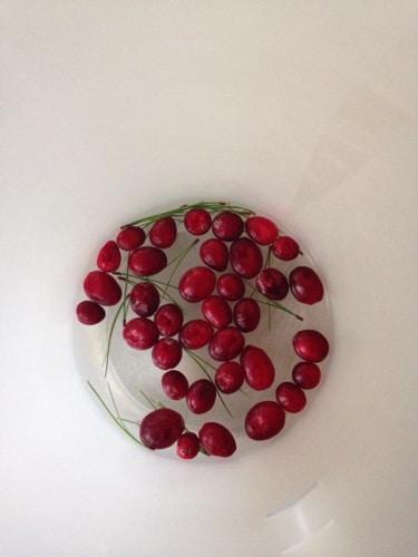 christmas-wine-vase.jpg