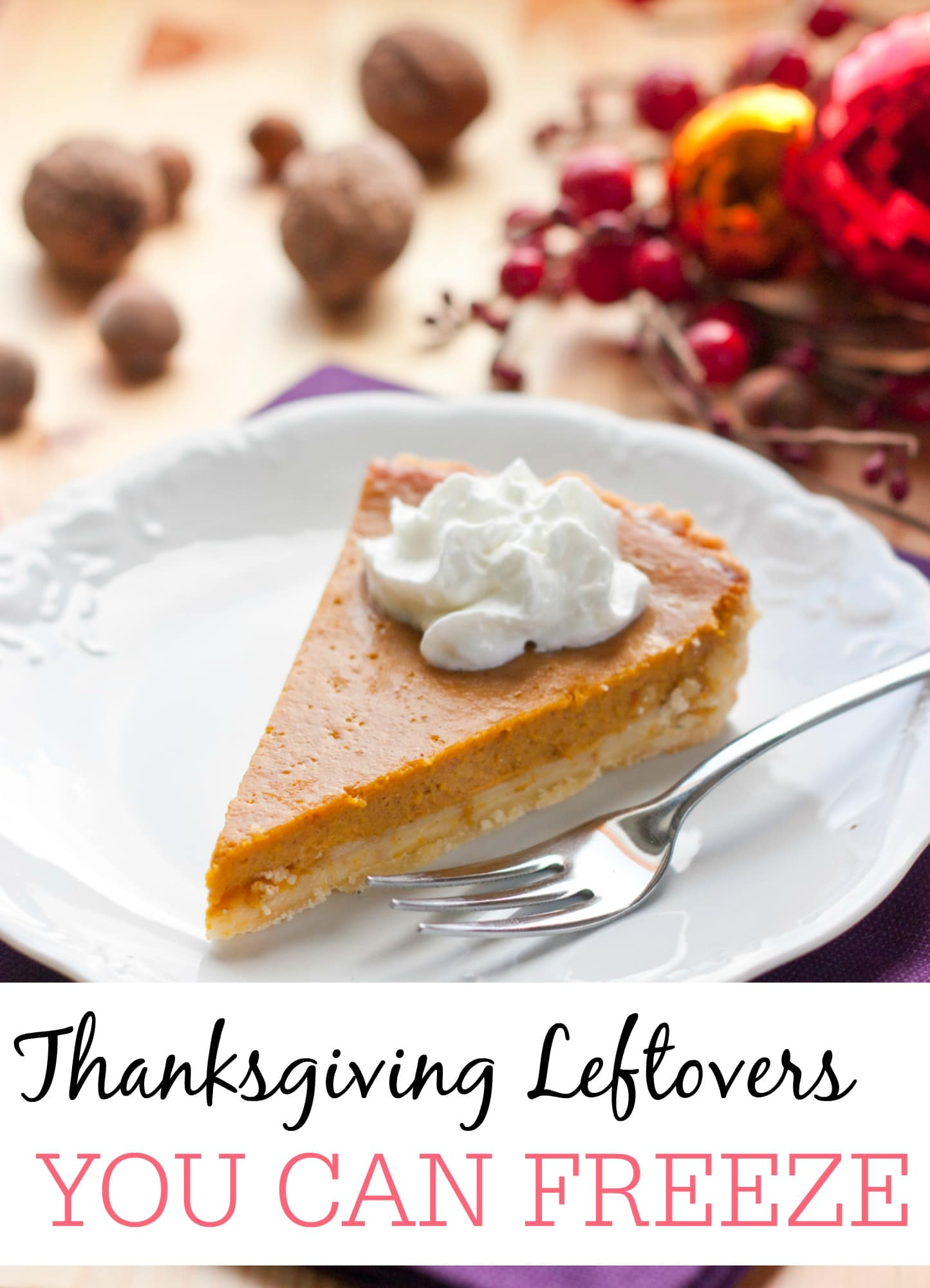 Awesome Tips For Freezing Thanksgiving Leftovers