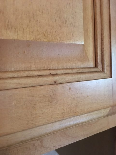 Removing Grease From Kitchen Cabinets how to remove grease from kitchen cabinets - frugally blonde