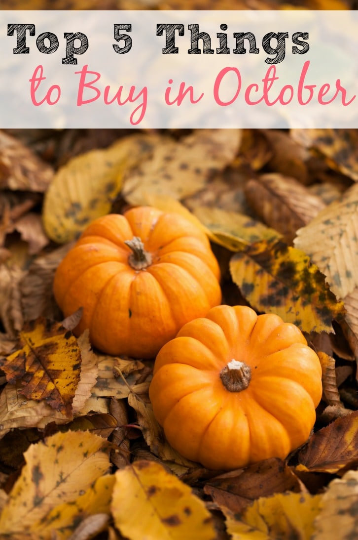top 5 things to buy in october