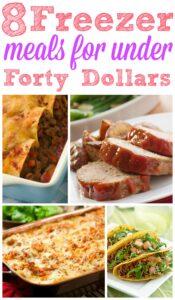 8 Freezer Meals for Under $40