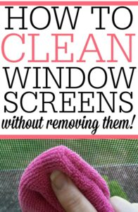 How To Clean Your Window Screens