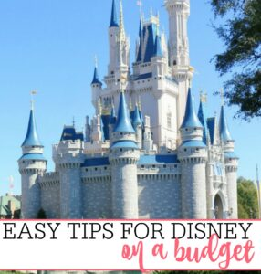 Easy Tips For Disney On A Budget