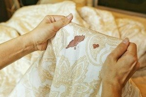 How To Remove Blood From Sheets