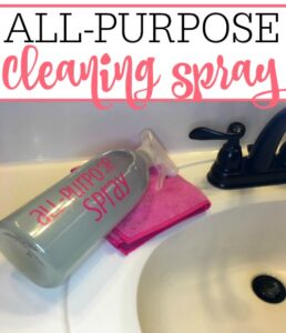 Homemade All-Purpose Cleaner