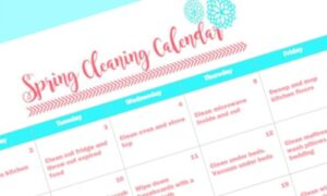 Spring Cleaning Tips and Printable