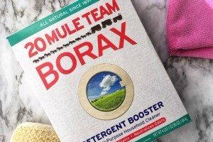 Amazing Uses For Borax