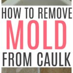 remove mold from shower caulk