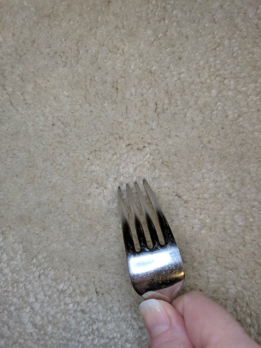 using fork to fluff carpet marks and remove them