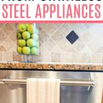 stainless steel appliance cleaning