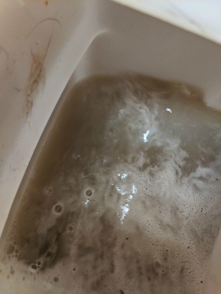 dirty water from cleaning carpets
