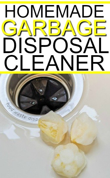 garbage disposal cleaner